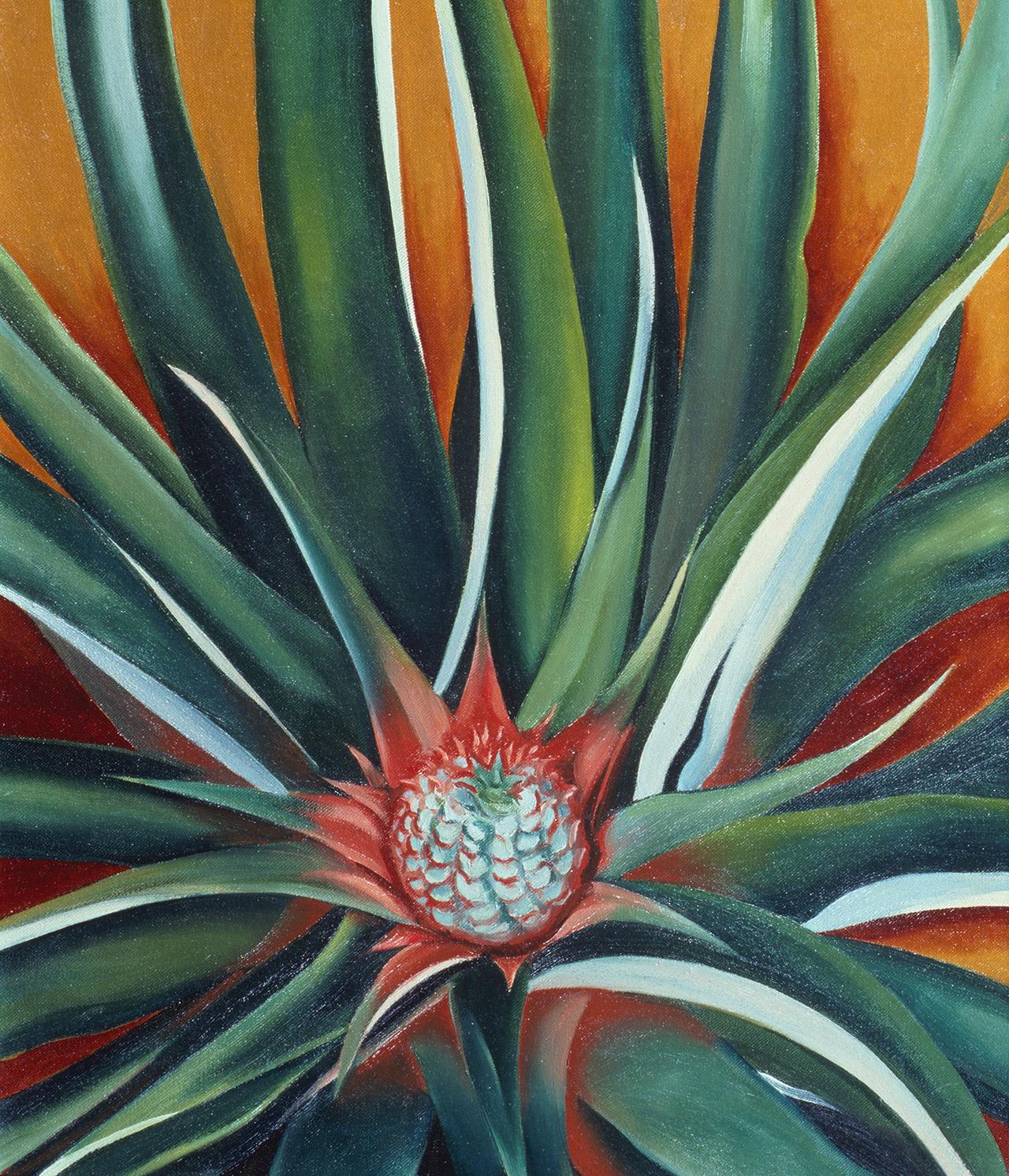 "Georgia O'Keeffe ""Pineapple Bud"" painting"